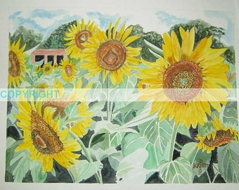SALE Gilliam Sunflowers - 11 X 14 Signed Art Print
