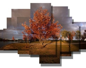 Greeting card of my Last Light photosculpture