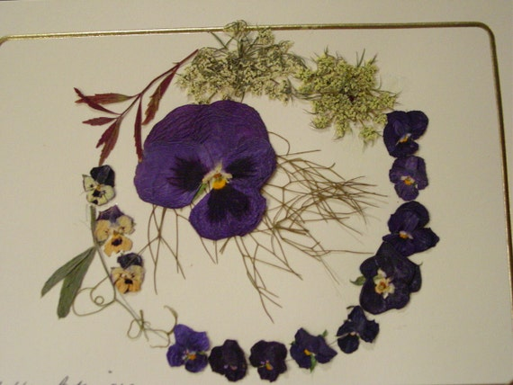 Blank Card Wreath of Real Pressed Flowers Pansy and Queen Ann's Lace - Dried Flowers - Greeting Card