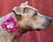 Custom Made Flower Collar For A Medium Dog
