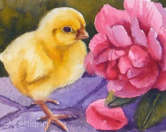 Baby Chick, Pink Rose, Animal Art Print, Unframed Chicken Art on Paper, 8x10 by Janet Zeh