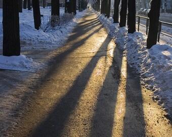 Winter sunset - Fine Art Photograph