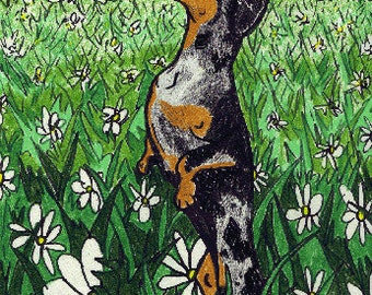 Dapple Dachshund Art, Dachshund Art, Wiener Dog Art, Dapple in the Daisies