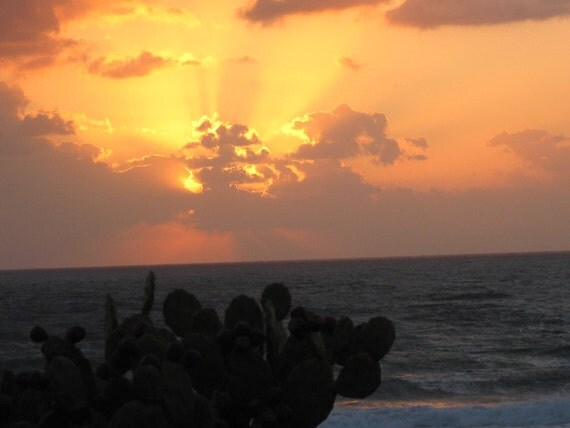 custonized listing Robbin - Personalized Heart Rocks - 8 Genuine heart shaped beach rocks