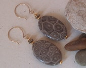 Sands of Time Earrings - Fossil Coral