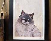 Mr. Ragdoll Cat  // A4 Print