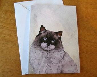 Mr. Ragdoll Cat // Greeting Card