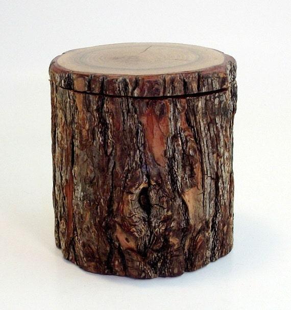 Natural Sassafras Tree Branch Stash Box