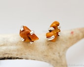 Raw Baltic Amber Sterling Silver Stud Earrings