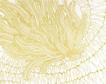 Gold Anemone Screenprint 5x7