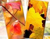Autumn foliage digital collage sheet 1x2 inches rectangles domino tile download digital file (131) Buy 3 - get 1 bonus