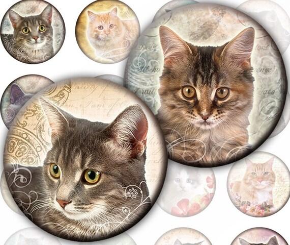 Vintage inspired Cats and kittens framed digital collage sheet 1.5 inch circles (249) Buy 3 - get 1 bonus
