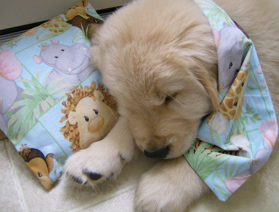 Aaahhh PUPPY LUV Lavender Aromatherapy Bandanna & Pillow
