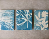 cyanotype mini notebooks