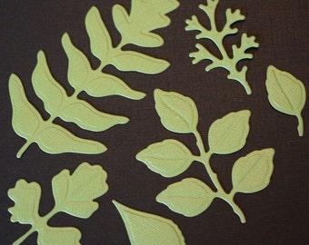 Leaf Die Cuts Foliage Die Cuts Spellbinders Shapeabilities Foliage