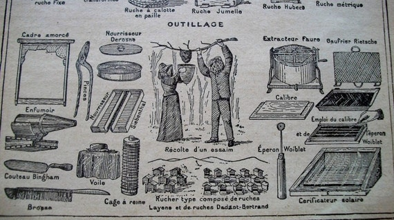 Antique French Print Dictionary Page 1920s Engraved iIlustrations Beekeeping paper projects scrapbooking, collage