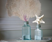 Vintage Aqua Glass Sea Life Bottle Set - Starfish and Sea Fan