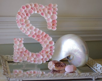 Beach Decor  Pink Rose Cup Seashell Monogram