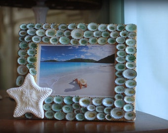 Beach Decor Limpet Shell and Starfish Frame - Seashell Frame - 5x7 Frame