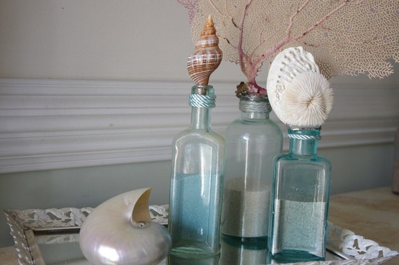 Beach Decor Vintage Aqua Glass Medicine Bottle with Filamentosa (Fox) Seashell