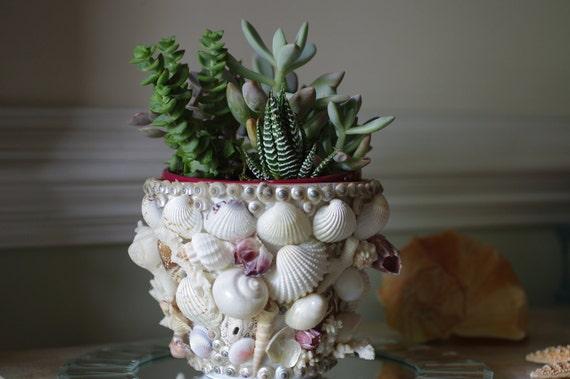 Beach Decor Flower Pot - Seashell, Coral and Barnacle Garden Pot