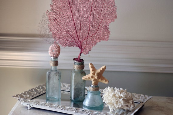 Beach Decor Set of 3 Vintage Aqua Glass Bottles - Starfish, Red Sea Fan and Sea Urchin