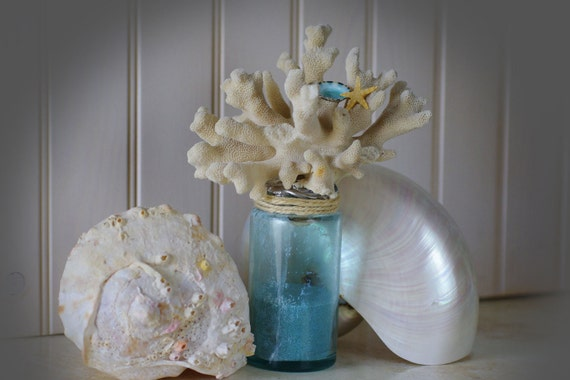 Beach Decor Vintage Aqua Glass Bottle with Cats Paw Coral, Limpet Shell and Starfish
