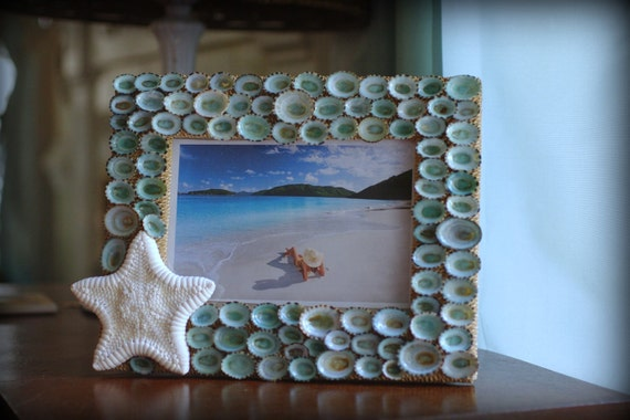 Beach Decor Limpet Shell and Starfish Frame - Seashell Frame - 5x7 Frame