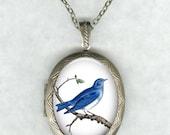 Bluebird Photo Locket Large Pendant- Vintage Bird Art Pendant Necklace with Chain