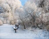 Fine Art Photography Landscape Winter Morning Snow