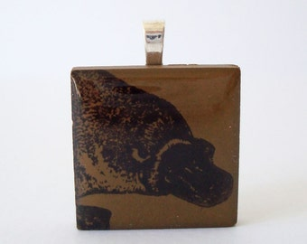 Platypus Necklace Porelain Tile Pendant Rubber Stamped