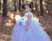 Beautiful Dream Fairy Dusk Tutu Dress