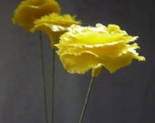 Set of 9 Yellow Flowers