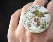 Bird - Adjustable Ring - Collage vintage postage stamps - Ready to Ship - OOAK