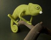 Green Chameleon - Needle Felted Miniature