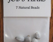 Jobs Tears Seed Pack