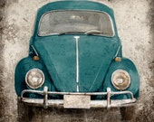Deep Teal Bug (or ANY COLOR) - Vintage Style Original Photograph Print