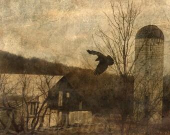 The Messenger - Original Photograph - Dark Sepia Barn Farmland Spooky Abandoned Gothic Crow Foreboding Black Bird