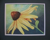 Hand Painted Watercolor Cone Flower 11 X 14