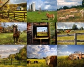 Nine from the Farm - Set of Nine 4x6 Photos - Country Rustic Cow Horse Fence Post Field Instant Decor Wall Art