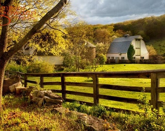 Items similar to rustic barn photograph golden grass field farm soft green country - Rustic wood fences a pastoral atmosphere ...