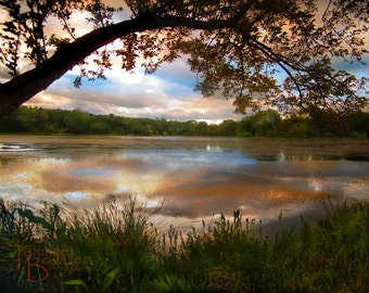 Sunset Over the Lake - Original Photograph 8x10 - Outdoors Nature Pond Colorful Autumn Fall Tree