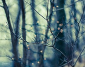 """Abstract Lights Photography - Abstract Naked Trees-  Holiday Home Decor - Fine Art Photography - 8X10 or 8x8 - """"Woodland Holiday"""""""