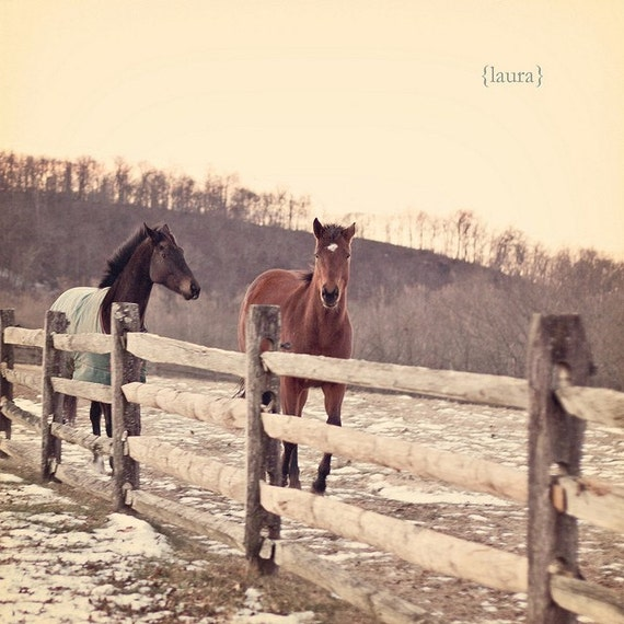 "Galloping Horses - Rustic Shabby - Home Decor - Baby Nursery - Fine Art Photography - ""Galloping"""