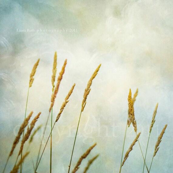"SALE 50% OFF - Nature Photograph - Baby Nursery - Baby Boy - Home Decor - Fine Art Photograph 8x8 - ""Golden Slumber"""