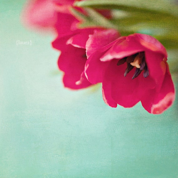 """Tulip Photography - Floral Nature - Vintage Inspired and Dreamy - Home Decor 4x6 5x5 5x7 -Fine Art Photograph - """"Tulips"""""""