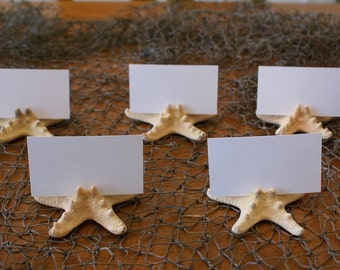 Knobby Starfish Place Card Holders - Set of 25