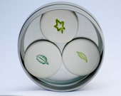 Green Leaves Magnets set of 3 in a tin Spring woodland leaves Forrest Fridge Magnets SALE