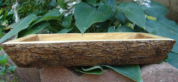 Exposed Bark Trough Wooden Bowl  (489)