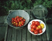 """8"""" x 10"""" print of polaroid photograph - summer tomatoes in vintage colander"""